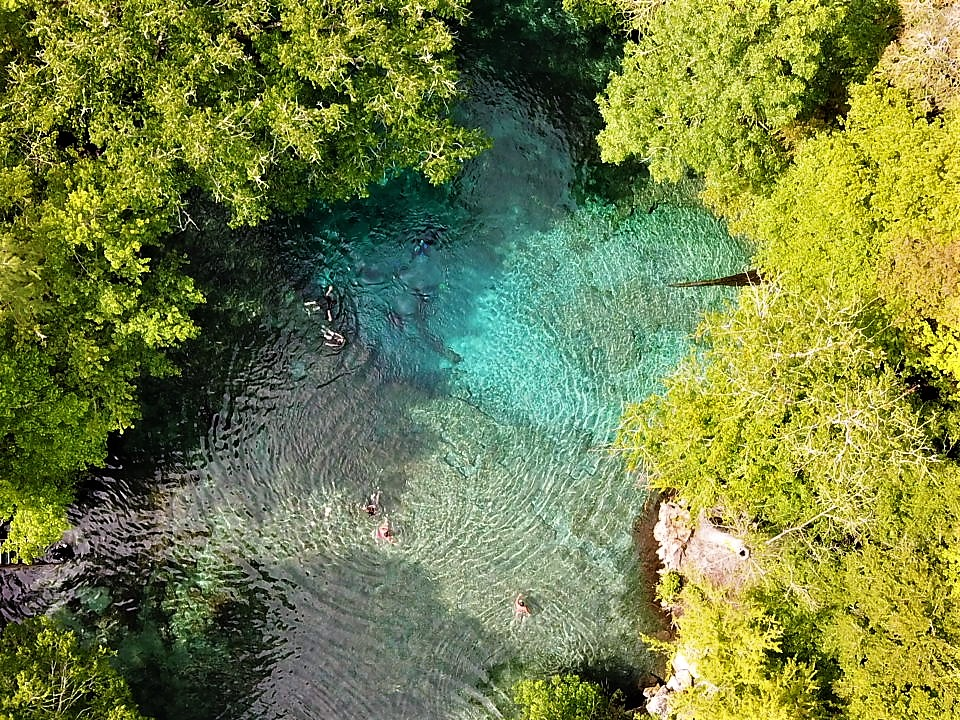 Ginnie Springs Dive Trip