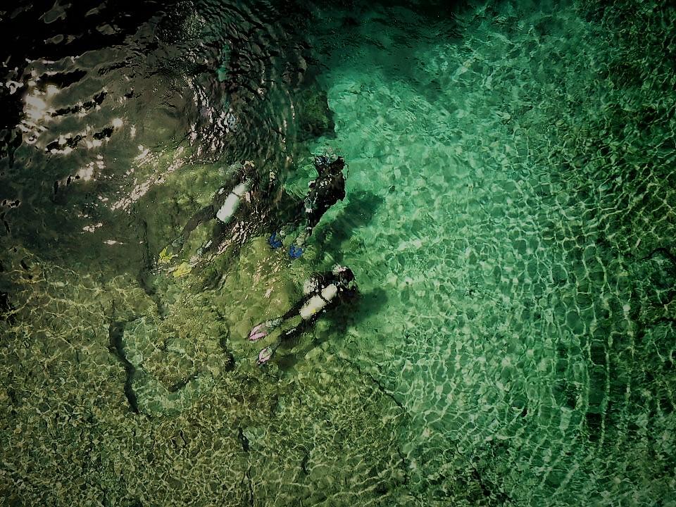 Florida Dive Trips