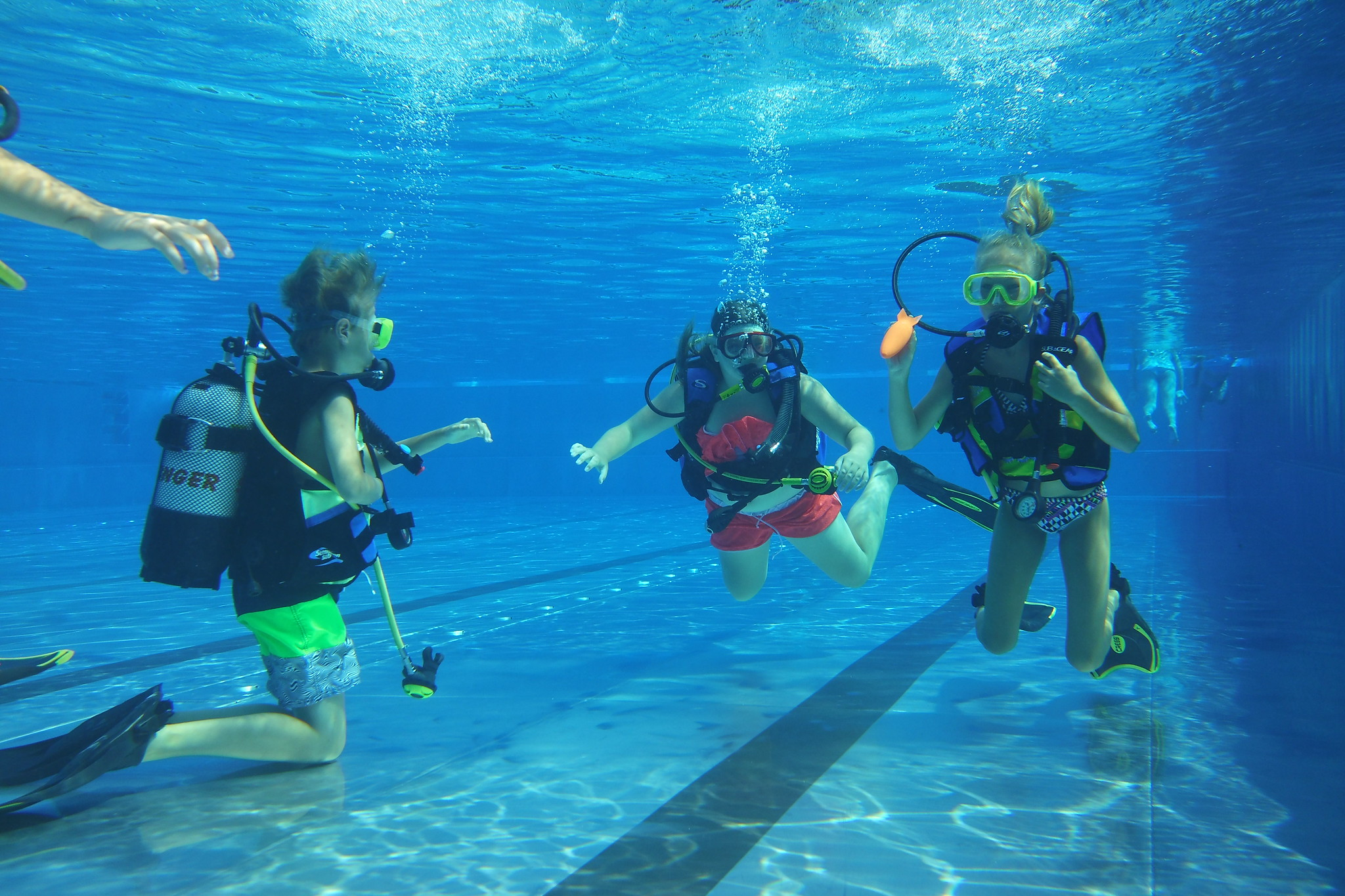 Scuba Diving Classes Dive Dive Dive