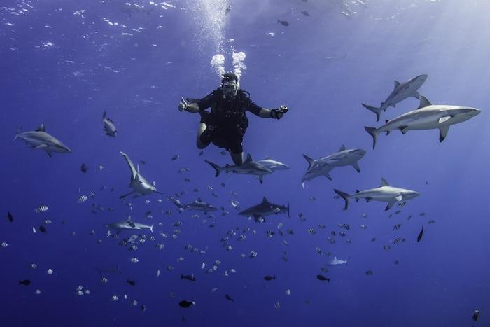 Yap Dive Trip